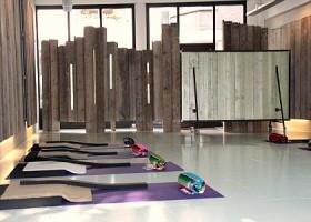 Yoga-Lab-Amsterdam-vier-paarse-yogamatjes-met-kussentjes-op-witte-grond-van-yogastudio-met-houten-wanden Wereld van Yoga