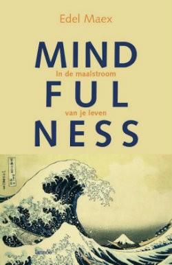 mindfulness edel maex boek