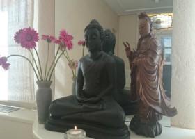 Yogastudio-DianavanGelder-Den Haag-buddha Wereld van Yoga