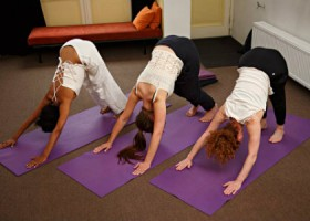yogastudio yomabe rotterdam delfshaven yogales Wereld van Yoga