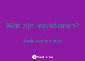 wat zijn meridianen wereld van yoga Wat zijn meridianen? - Wereld van Yoga