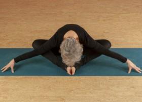 yogastudio integrale yoga schiedam ervaren docente Wereld van Yoga