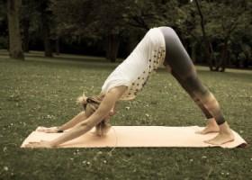 Justflowyoga-Rotterdam-vrouw-doet-neerkijkende-hond-yogahouding-in-gras Wereld van Yoga
