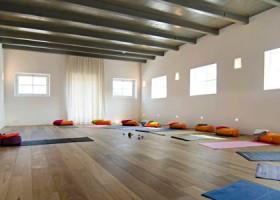 Yoga school Harlingen Studio Hoog en Droog