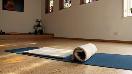Vilten mat critical alignment yoga integrale yoga schiedam rotterdam