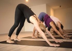 yogastudio helder yoga den haag vinyasa dynamisch Wereld van Yoga