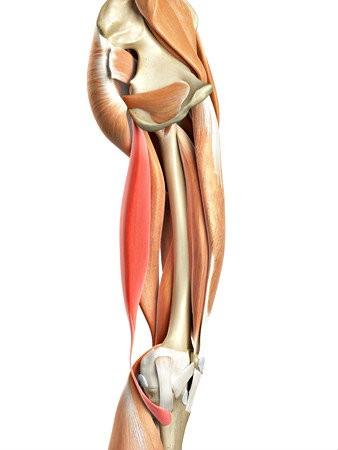 yin yoga helpt bij stijve heupen benen bekken