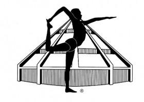 Logo-iyengar-yoga-van-poll Wereld van Yoga
