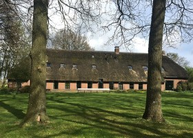 Stilte-retraite-Nederland-wereld-van-yoga-boerderij-in-Drenthe-met-zon-en-gras Een bijzondere week op stilte retraite in Nederland - Wereld van Yoga