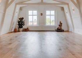 yogastudio-delight-yoga-weteringschans-amsterdam-boeddha-plant Wereld van Yoga