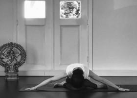 yogastudio yoga loft hilversum asana Wereld van Yoga
