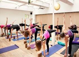 yoga utrecht noord wittevrouwen yogastudio yoga moves