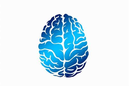 verschil mindfulness meditatie hersenen focus
